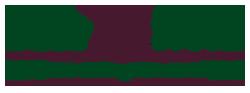 DeepSouth_Logo_250